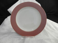 NORITAKE Colorware Terra Cotta Stoneware NWT plate great collectible or gift