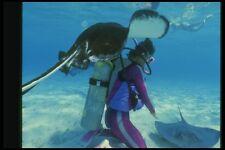 164085 Diver y surena A4 Foto Impresión