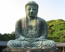 The Great Buddha of Kamakura in Japan 8x10 Photo Picture