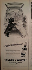 1958 Black & White Scotch Whiskey Scottish Terriers Scotties Car Tailgate Ad