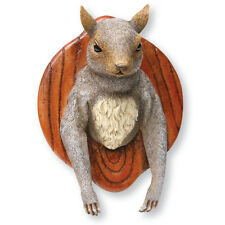 3D FUN WALL MOUNTED SQUIRREL HEAD - Cast Resin Novelty Faux Hunting Trophy