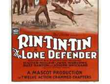 THE LONE DEFENDER, 12 CHAPTER SERIAL, 1930 - RIN TIN TIN