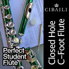 GREEN and SILVER C foot Flute • BRAND NEW • Case • Perfect For School Student •