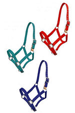 BREAKAWAY LEATHER STRAP SAFETY HORSE HALTER HEAVY NYLON HORSE SIZE RED BLUE TEAL