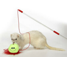 MARSHALL PET FERRET TEASER WAND TOY 1 PACK FREE SHIPPING TO THE USA ONLY