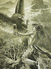 Cary INDIAN FIGHTS EAGLE for Rabbit Food in the CLOUDS 1878 Antique Print Matted