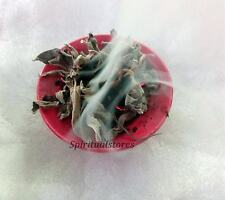 DRIED SAGE LEAVES SMUDGING | HERBAL TEA | BATH | REMOVING BAD ENERGIES