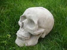 "Very Popular, LATEX MOULD MOLD LARGE SKULL LENGTH 8""/20cm -- N"