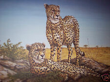 """Vantage Point-Cheetahs"" by Christine Marshall Limited Ed ARP Lithograph #10/25"