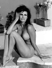 RAQUEL WELCH MOVIE SUPERSTAR  8X10 PHOTO