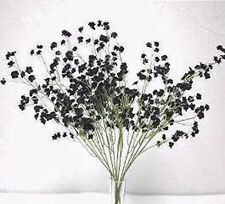 12 Baby's Breath ~ BLACK ~ Gyp Gypsophila Silk Wedding Flowers Centerpieces NEW