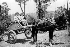 Photo. ca 1954. Australia.  Elmside Dairy Delivery Wagon in Valley Heights