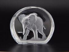 Scultura Murano Collection Icona Elefante Scolpito Vetro Murano Made in Italy