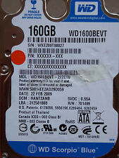 Western Digital WD1600BEVT-22ZCT0 / HANT2ANB / 22 FEB 2009 - 160 GB disco rigido