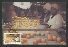 CISKEI MK 1988 FLORA FRUIT CITRUS MAXIMUMKARTE CARTE MAXIMUM CARD MC CM d6167