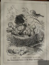 """7x10"""" PUNCH cartoon 1852 A BIT OF ANIMATED NATURE disraeli protectionist russell"""