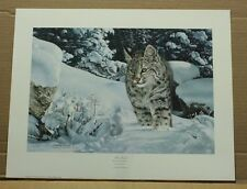 The Quest by Charles Frace-Wildlife-COA-bobcat-lynx-Tennessee Artist