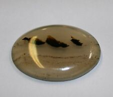 Natural Montana Agate cabochon, 21x30mm mineral gemstone