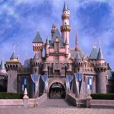 Beautiful castle 8'x8' CP Backdrop Computer-painted Scenic Background zjz-827