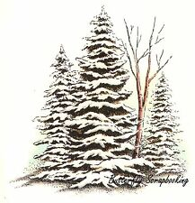 WINTER PINE TREE GROVE Cling Unmounted Rubber Stamp C.C. Designs JD1037 New