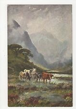 Cattle, Rural, Faulkner Art series 1230 Postcard, A702