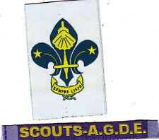 Boy Scout Badges MEMBERSHIP + NAT STRIP AGDE Assn SPAIN