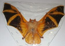 KERIVOULA PICTA ASIAN PAINTED SPREAD REAL BAT INDONESIAN TAXIDERMY