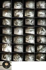 16 mm Film von ca.1953-In einer Fischreiher Kolonie-Natur/Realaufn.-Antique film