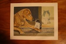 The Adoption James Lumbers Open Edition Collectors Print Dog and Cat