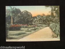 old China HK postcard, the Botanic garden,HK,unused