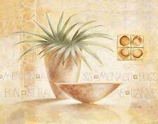 Claudia Ancilotti: Monaco Fertig-Bild 50x70 Wandbild Stillleben Vasen Deko