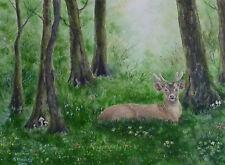 Dipinto Acquerello di cervo. ORIGINALE, bosco, WOODLAND, Animale Selvatico FUNGHI VELENOSI