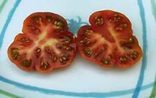 RARE Heirloom ✽ RED STAR ✽ Specialty Tomato ✽ 15 Seeds ✽ non-GMO