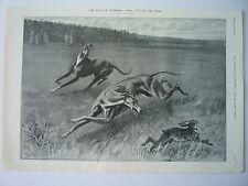 """""""le champ de waterloo, -- fawn coupe le travail 1910""""."""