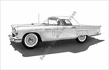 1957 Thunderbird with Wire Wheels & no Porthole drawing/print/picture 57 T-Bird