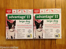 K9 Advantage 21-55 Flea Lice Medicine for Large Dogs Pack K-9 8 Month Supply
