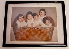 CANADIAN DIONNE QUINTS IN BASKET PHOTO COPYRIGHT 1936 by NEA Service- Framed