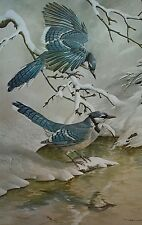 Vintage Bird Art Print BLUE JAYS IN WINTER by Basil Ede 22x28""