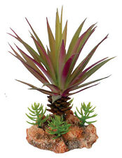 Desert Plant with Rock Base Reptile Terrarium Vivarium Decoration -MaaFs
