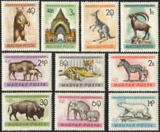 Hungary 1961 Zoo/Elephant/Zebra/Tiger/Bears/Animals/Nature/Wildlife 10v (n44968)