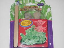Growing GREEN Crystals - Fun Science Toy In Action Kids Science Project, Crafts