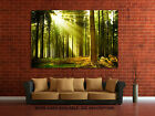 Wall Art Canvas Picture Print - Pine Tree Forest - 3.2