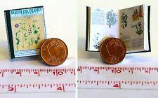 1030# Kräuter und Pflanzen der Provence - Puppenhaus - Puppenstube - M 1zu12