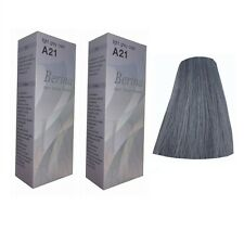 Berina Hair Grey Colors Cream Hair Style Professional Use Permanent 2 sets