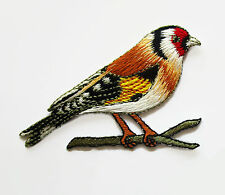 (12) Large GOLDFINCH Birds Red Face Yellow Wing~ Wholesale Embroidered Appliques