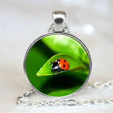 New Adybug Cabochon Tibetan silver Glass Chain Pendant Necklace XC26
