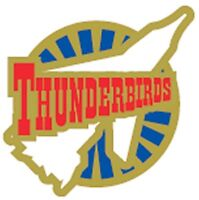 Gerry Anderson's Thunderbirds Thunderbird  One enamel pin badge BRAND NEW  !