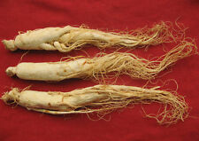2.2 lbs,Dried Korean,Chinese Panax White Ginseng Roots ren shen 6 Years Old 1 kg