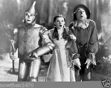 #607 The Wizard Of Oz Black & White 8.5 x 11 Glossy Picture Photo NOT 8 X 10