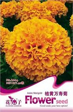 1 Pack 40 Orange Aztec Marigold Seeds Tagetes Erecta Marigold Garden Seeds A004